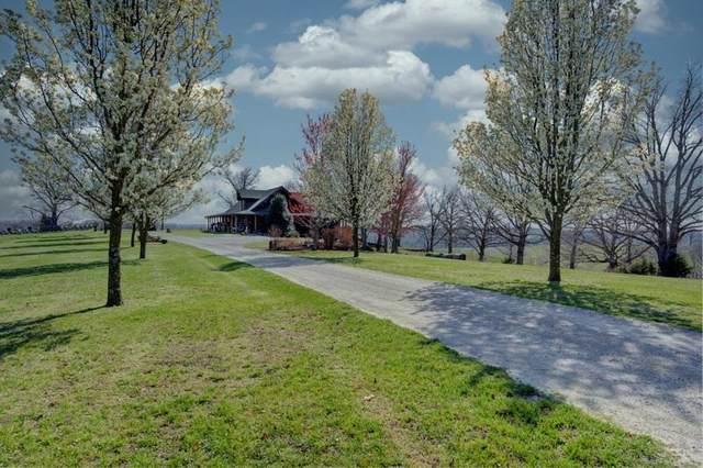 2024 Dogwood Tree Road, Reeds Spring, MO 65737 (MLS #60187444) :: Winans - Lee Team | Keller Williams Tri-Lakes