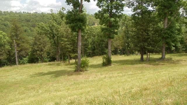 116 Cedar Bluff, Saddlebrooke, MO 65630 (MLS #60187727) :: Team Real Estate - Springfield