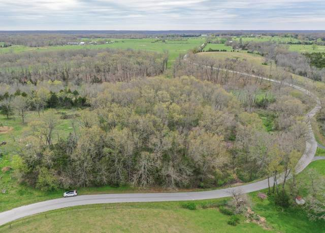 000 Lon Road, Rogersville, MO 65742 (MLS #60187728) :: The Real Estate Riders