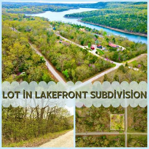 Lot 140 Linden Lane, Shell Knob, MO 65747 (MLS #60187752) :: Tucker Real Estate Group | EXP Realty