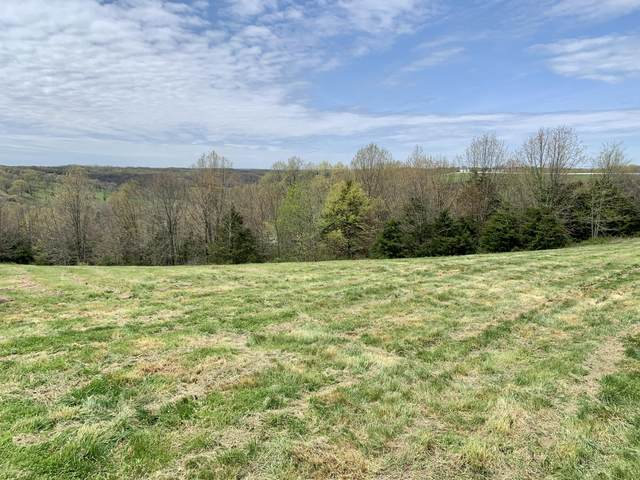 000 State Hwy 413, Galena, MO 65656 (MLS #60187805) :: Team Real Estate - Springfield
