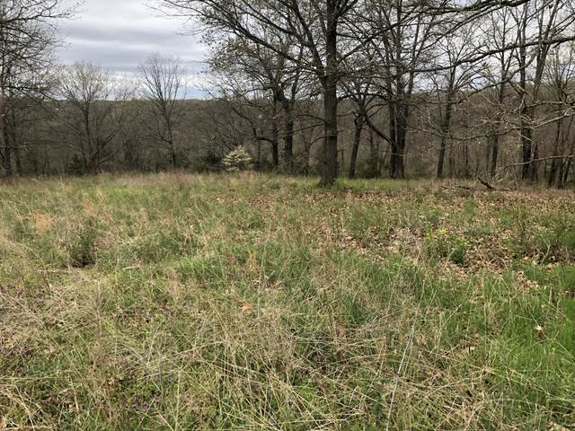 Tbd Panorama, Cape Fair, MO 65624 (MLS #60187820) :: Tucker Real Estate Group | EXP Realty