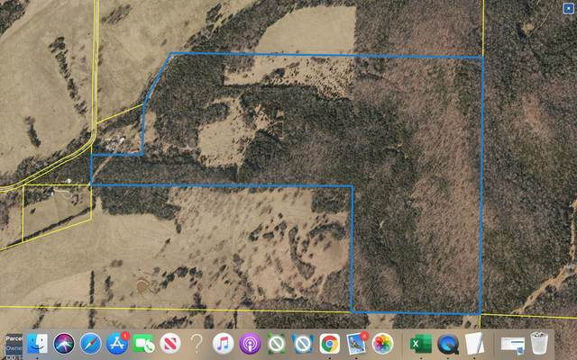 Tbd Farm Rd 2090, Aurora, MO 65605 (MLS #60188011) :: Team Real Estate - Springfield