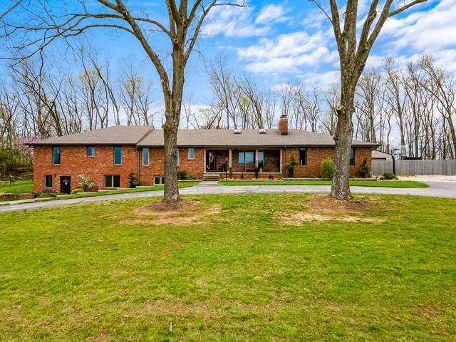 4875 S Farm Road 213, Rogersville, MO 65742 (MLS #60188018) :: The Real Estate Riders