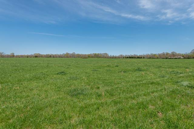 Tract B-C State Hwy U, Rogersville, MO 65742 (MLS #60188091) :: Clay & Clay Real Estate Team