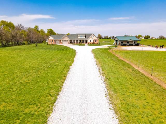 8689 W Farm Road 194, Republic, MO 65738 (MLS #60188240) :: Team Real Estate - Springfield