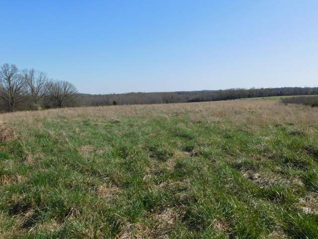 000 State Rt 142, Bakersfield, MO 65609 (MLS #60188433) :: Sue Carter Real Estate Group