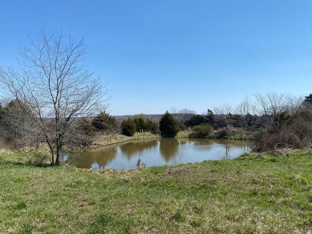 000 Hwy Zz, Osceola, MO 64776 (MLS #60188458) :: Sue Carter Real Estate Group