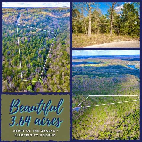 Lot 10 Huntington Drive, Branson, MO 65616 (MLS #60188639) :: Lakeland Realty, Inc.