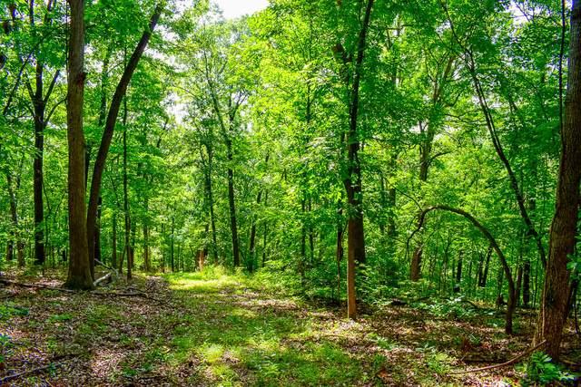 000 Autumn Estates Subdivision, Cassville, MO 65625 (MLS #60188684) :: Tucker Real Estate Group | EXP Realty