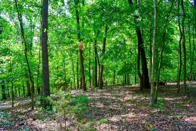 000 Coyote Ridge Road, Cassville, MO 65625 (MLS #60188829) :: Tucker Real Estate Group | EXP Realty