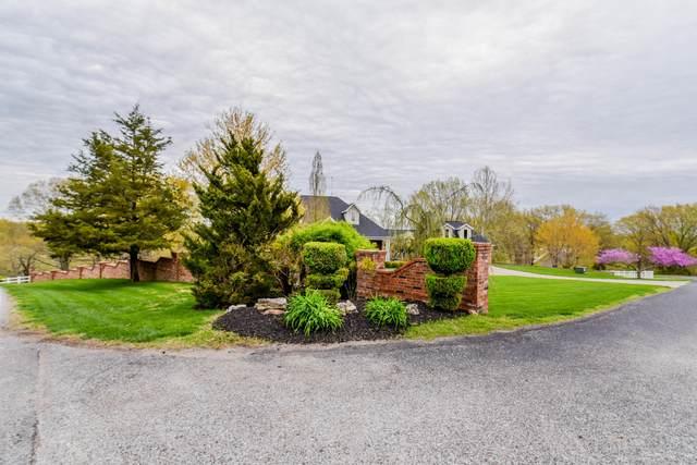 12 Highland Drive, Chestnutridge, MO 65630 (MLS #60188858) :: Tucker Real Estate Group | EXP Realty