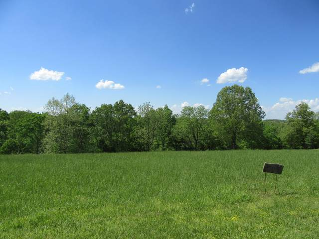 Lot 509 Forest View, Saddlebrooke, MO 65630 (MLS #60188862) :: Team Real Estate - Springfield