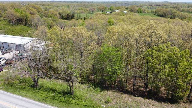 000 TractA Mo-413 Highway, Reeds Spring, MO 65737 (MLS #60188901) :: Tucker Real Estate Group | EXP Realty