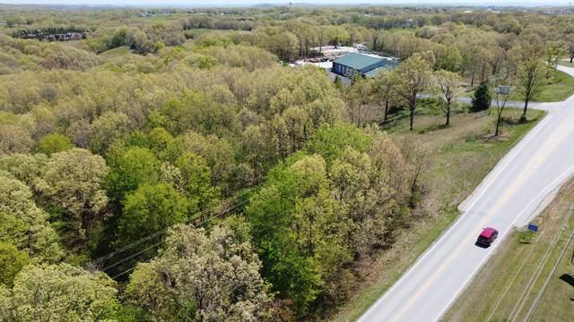 000 TractB Mo-413 Highway, Reeds Spring, MO 65737 (MLS #60188902) :: Winans - Lee Team | Keller Williams Tri-Lakes