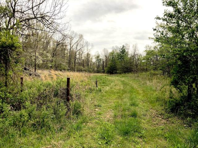 000 County Road 232, Thayer, MO 65791 (MLS #60189069) :: United Country Real Estate
