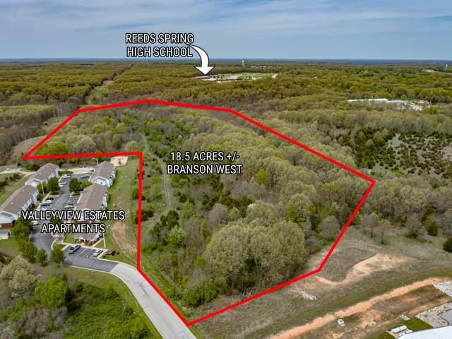 105 Estate Lane, Branson West, MO 65737 (MLS #60189074) :: Evan's Group LLC