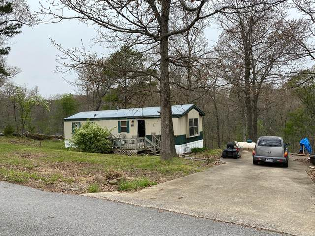 12171 90 Highway, Pineville, MO 64856 (MLS #60189080) :: Tucker Real Estate Group | EXP Realty