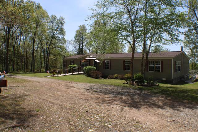 209 Dentin Lane, Udall, MO 65766 (MLS #60189189) :: The Real Estate Riders