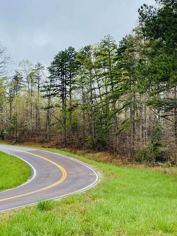 000-000 Vv Highway, Salem, MO 65560 (MLS #60189456) :: United Country Real Estate