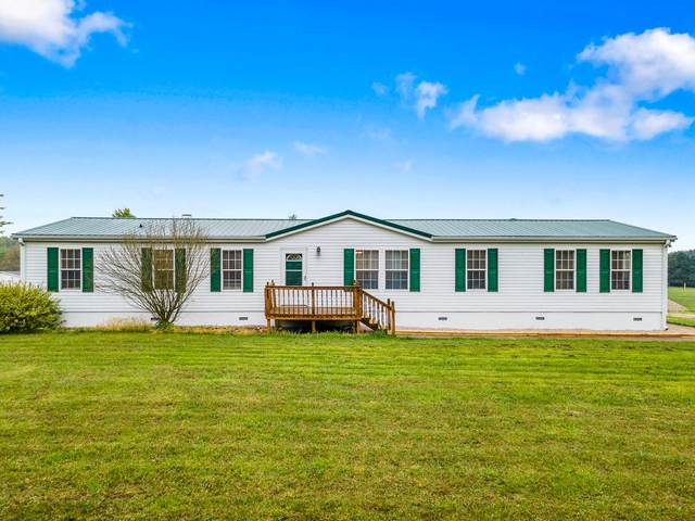 282 Chapel Hill Drive, Rogersville, MO 65742 (MLS #60189638) :: Team Real Estate - Springfield