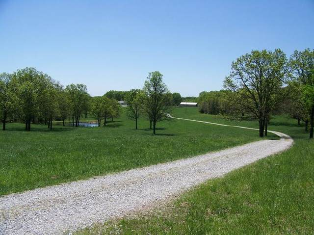 8896 State Route Zz, West Plains, MO 65775 (MLS #60189817) :: United Country Real Estate