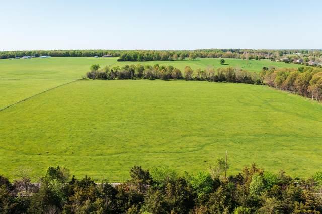Tbd1 E Farm Road 80, Strafford, MO 65757 (MLS #60189841) :: The Real Estate Riders