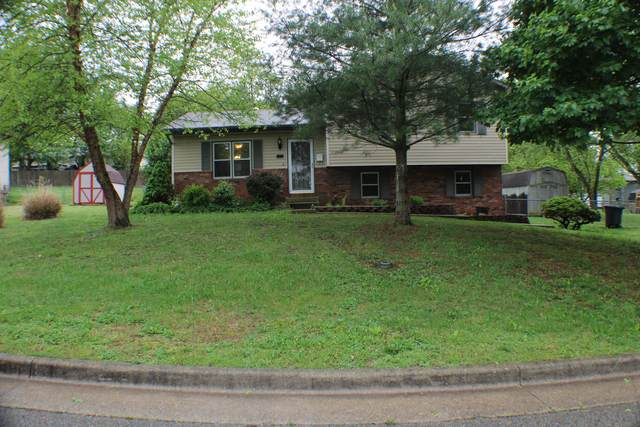 1538 W 1st Street, West Plains, MO 65775 (MLS #60189918) :: United Country Real Estate