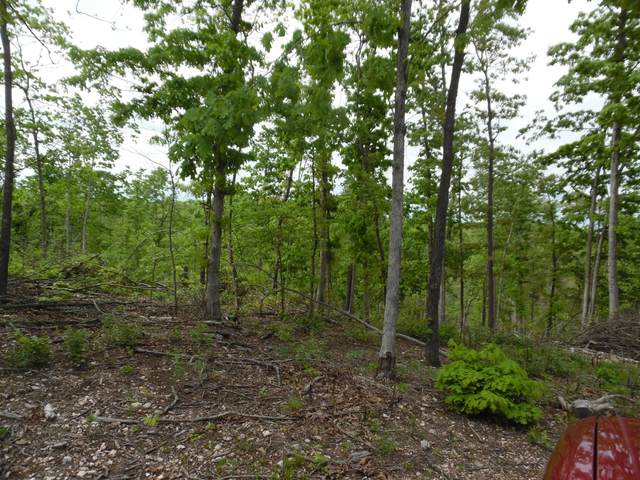 Xxxx Farm Road 1150, Cassville, MO 65625 (MLS #60189951) :: Tucker Real Estate Group | EXP Realty