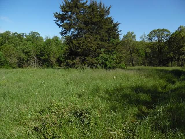 Xxxx Farm Road 1060 Lot #1, Cassville, MO 65625 (MLS #60189953) :: The Real Estate Riders