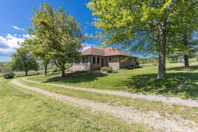 591 S Farm Road 45, Bois D Arc, MO 65612 (MLS #60189963) :: The Real Estate Riders