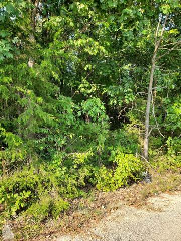 000 Tree Top Lane, Merriam Woods, MO 65740 (MLS #60190074) :: Sue Carter Real Estate Group