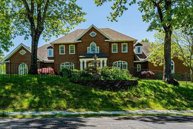 229 Grand Pointe, Branson, MO 65616 (MLS #60190105) :: Clay & Clay Real Estate Team