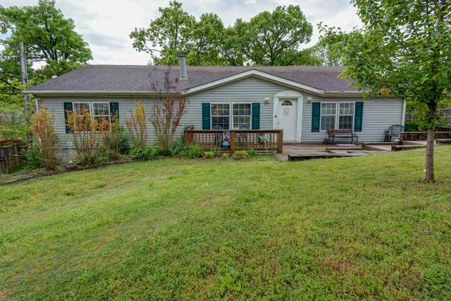 137 Park Drive, Branson, MO 65616 (MLS #60190142) :: The Real Estate Riders
