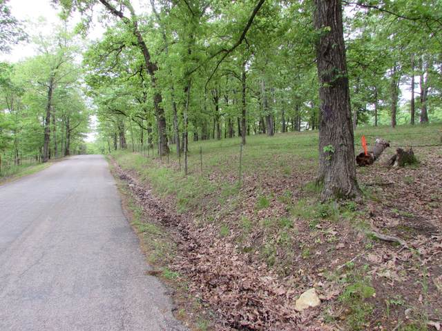 000 Lot A Mountain Grove Road, Branson, MO 65616 (MLS #60190186) :: The Real Estate Riders