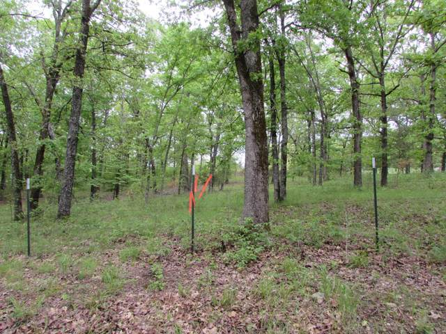 000 Lot B Mountain Grove Road, Branson, MO 65616 (MLS #60190192) :: Evan's Group LLC