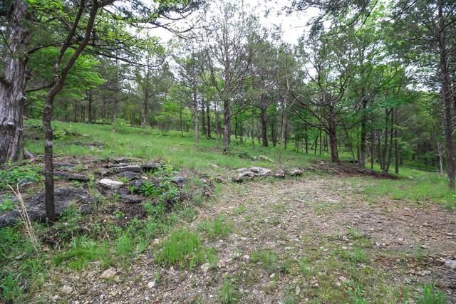000 Blue Springs Lane, Reeds Spring, MO 65737 (MLS #60190201) :: The Real Estate Riders