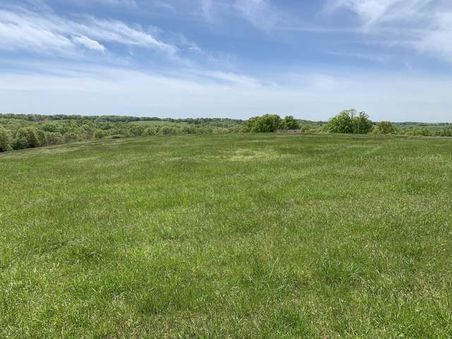 3552 State Hwy 76, Cape Fair, MO 65624 (MLS #60190209) :: The Real Estate Riders