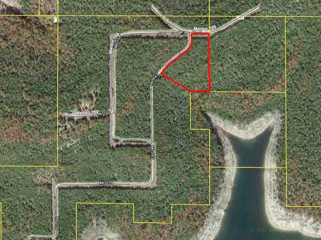 000a Mc167, Theodosia, AR 65761 (MLS #60190261) :: Sue Carter Real Estate Group