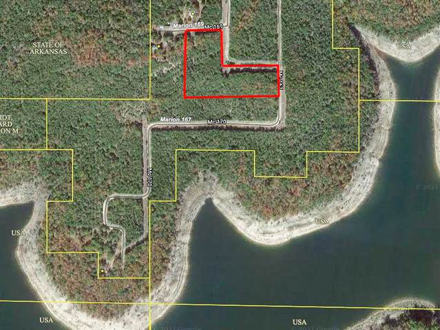 000b Mc167, Theodosia, AR 65761 (MLS #60190262) :: Sue Carter Real Estate Group