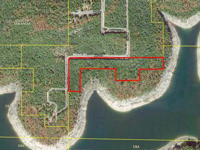 000c Mc167, Theodosia, AR 65761 (MLS #60190263) :: Sue Carter Real Estate Group