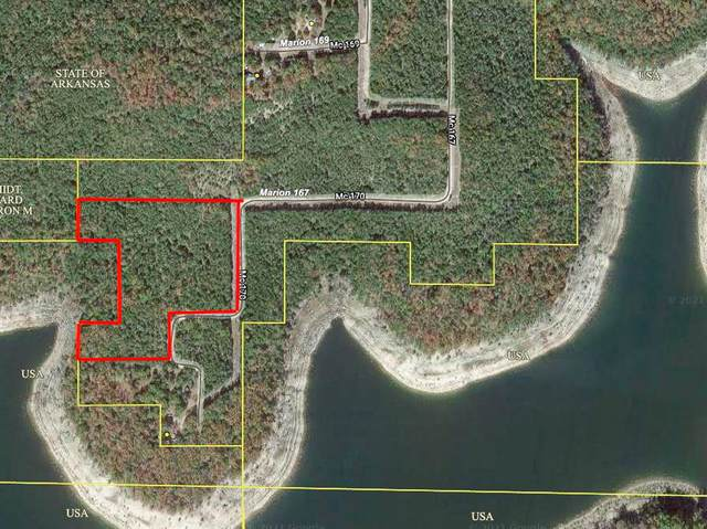 000d Mc167, Theodosia, AR 65761 (MLS #60190264) :: Sue Carter Real Estate Group
