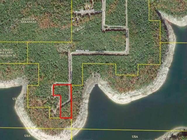 000e Mc167, Theodosia, AR 65761 (MLS #60190265) :: Tucker Real Estate Group | EXP Realty