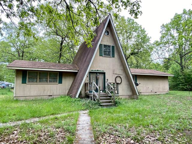 1982 E 564th Road, Pleasant Hope, MO 65725 (MLS #60190328) :: The Real Estate Riders