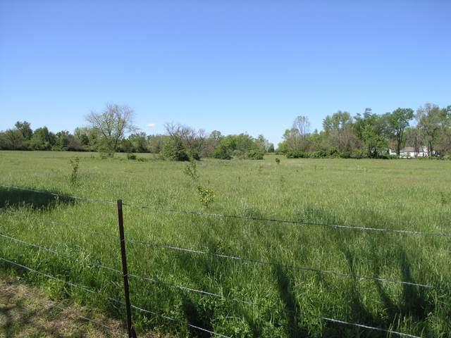 Tbd E Sunshine Street, Mountain Grove, MO 65711 (MLS #60190338) :: Tucker Real Estate Group   EXP Realty