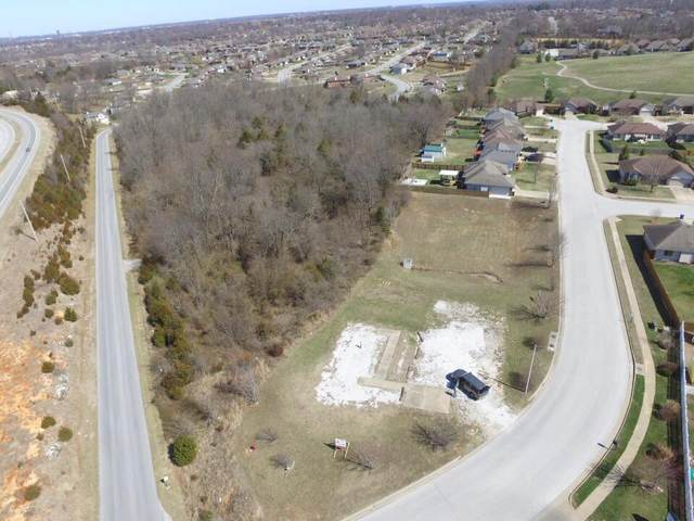 4221 W Sandy Street, Battlefield, MO 65619 (MLS #60190345) :: The Real Estate Riders
