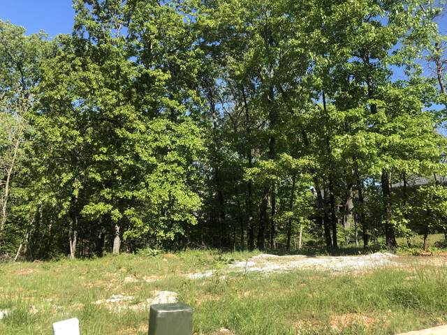 Tbd S Scenic Avenue, Joplin, MO 64804 (MLS #60190395) :: Tucker Real Estate Group | EXP Realty