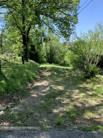 000 Kingsway Drive, Branson, MO 65616 (MLS #60190506) :: Lakeland Realty, Inc.