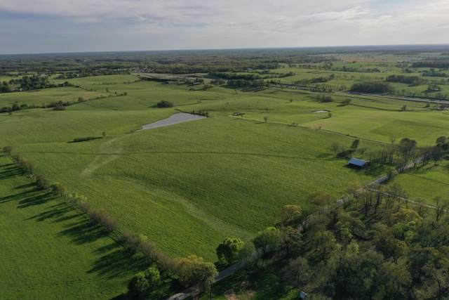 000 Meadowlark Road, Ozark, MO 65721 (MLS #60190596) :: Clay & Clay Real Estate Team