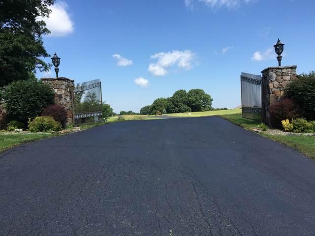 000 Lot 3 Vineyard Court, Reeds Spring, MO 65737 (MLS #60190636) :: Lakeland Realty, Inc.